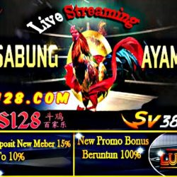 Sabung Ayam Live Streaming S128 SV388